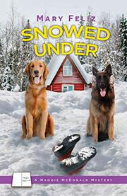 SNOWED UNDER Cover