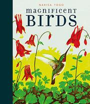 MAGNIFICENT BIRDS by Candlewick Press