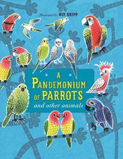 A PANDEMONIUM OF PARROTS AND OTHER ANIMALS by Kate Baker