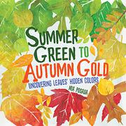 SUMMER GREEN TO AUTUMN GOLD by Mia Posada