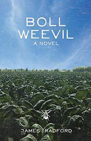BOLL WEEVIL by James  Radford