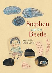 Book Cover for STEPHEN AND THE BEETLE