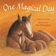 Book Cover for ONE MAGICAL DAY