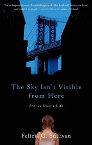 Cover art for THE SKY ISN'T VISIBLE FROM HERE