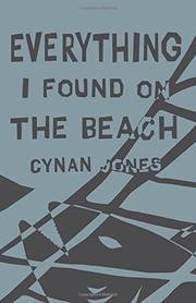 EVERYTHING I FOUND ON THE BEACH by Cynan Jones