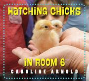 HATCHING CHICKS IN ROOM 6 by Caroline Arnold