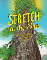 STRETCH TO THE SUN by Carrie A. Pearson