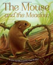 THE MOUSE AND THE MEADOW by Chad Wallace