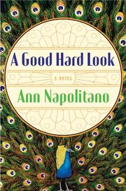 A GOOD HARD LOOK by Ann Napolitano