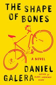 THE SHAPE OF BONES by Daniel Galera