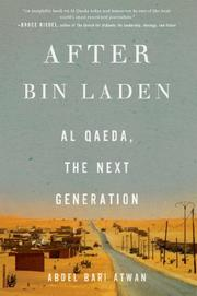 Book Cover for AFTER BIN LADEN