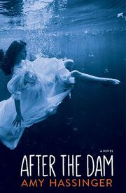 AFTER THE DAM by Amy Hassinger