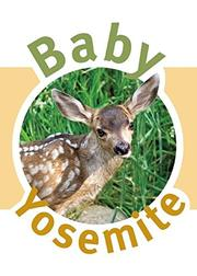 BABY YOSEMITE by Katherine Brumage