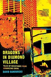 DRAGONS IN DIAMOND VILLAGE by David Bandurski