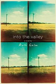 INTO THE VALLEY by Ruth Galm