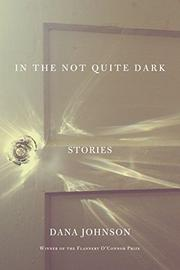 IN THE NOT QUITE DARK by Dana Johnson