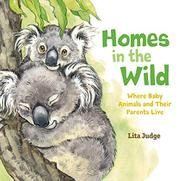 HOMES IN THE WILD by Lita Judge