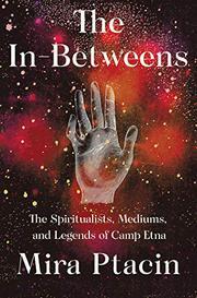 THE IN-BETWEENS by Mira Ptacin