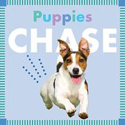 PUPPIES CHASE by Rebecca Glaser