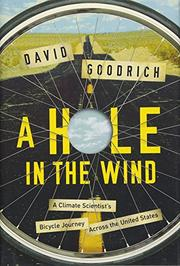A HOLE IN THE WIND by David  Goodrich