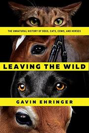 LEAVING THE WILD by Gavin  Ehringer