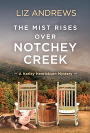 THE MIST RISES OVER NOTCHEY CREEK by Liz  Andrews