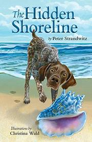 THE HIDDEN SHORELINE by Peter  Strandwitz