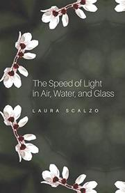 THE SPEED OF LIGHT IN AIR, WATER, AND GLASS by Laura  Scalzo
