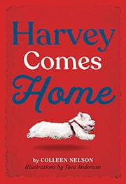 HARVEY COMES HOME by Colleen Nelson