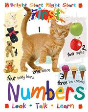 FIRST NUMBERS by Rob Walker