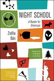 NIGHT SCHOOL by Zsófia Bán