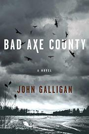 BAD AXE COUNTY by John Galligan