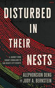 DISTURBED IN THEIR NESTS by Alephonsion Deng