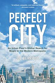 PERFECT CITY by Joe  Berridge