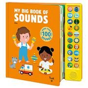 MY BIG BOOK OF SOUNDS by Kiko