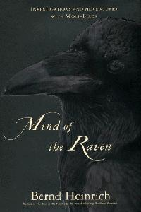 THE MIND OF A RAVEN
