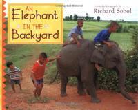 AN ELEPHANT IN THE BACKYARD