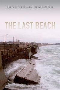THE LAST BEACH