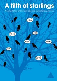 A FILTH OF STARLINGS