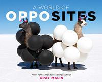 A WORLD OF OPPOSITES