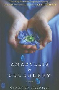 AMARYLLIS IN BLUEBERRY