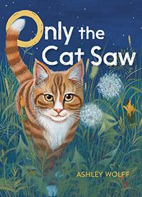 ONLY THE CAT SAW