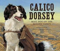 CALICO DORSEY