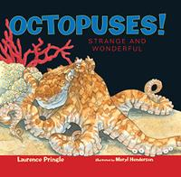 OCTOPUSES!