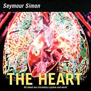 THE HEART: Our Circulatory System