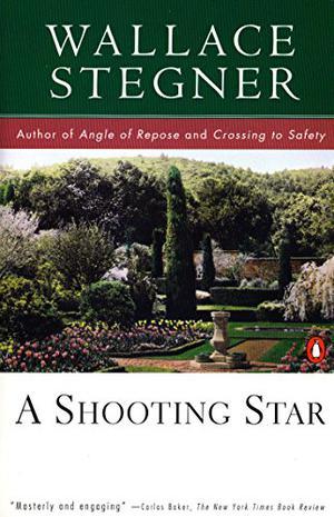 A SHOOTING STAR