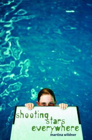 SHOOTING STARS EVERYWHERE