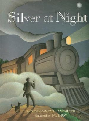 SILVER AT NIGHT