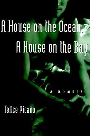 A HOUSE ON THE OCEAN, A HOUSE ON THE BAY