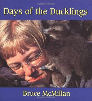 DAY OF THE DUCKLINGS